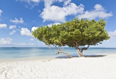 The 10 Best Caribbean islands - Avila Beach Hotel Curacao