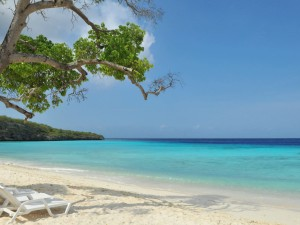 A vacation to Aruba or Curacao: the differences and similarities