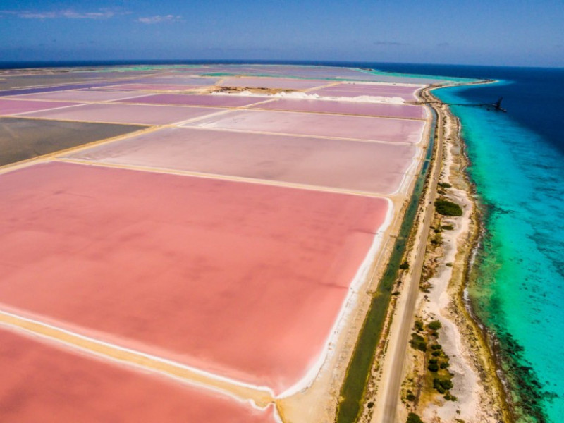 Salt flats (Bonaire)